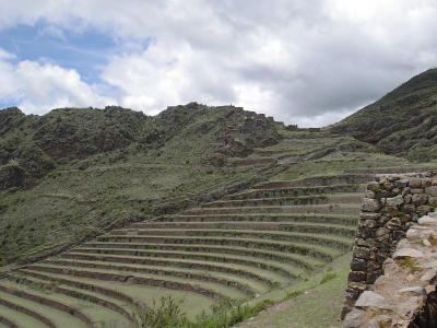 Pisac_terrace_closeup